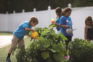 Five Benefits of Teaching Children to Garden, The Goddard School®